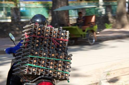 Eggs-cellent transportation
