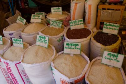 Just few varieties of rice